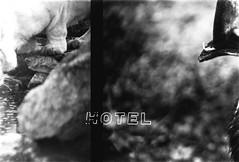 (џо_банана) Tags: 35mm 35mmphotography filmphotography filmisnotdead filmisalive doubleexposure fomapan analogue analog analoguephotogrpahy grainisgood grainy buyfilmnotmegapixels ilovefilm ishootfilm animals animal photography zoo lefkada sharefilm film community sea summer rocks coastline seaside dark cage