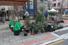 Feria de San Antón - Amurrio  - 2020  #DePaseoConLarri #Flickr-29 (Jose Asensio Larrinaga (Larri) Larri1276) Tags: 2020 feriadesanantón amurrio álava araba basquecountry euskalherria turismo fotografía productosdelazona