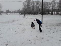 20200119_112208 (Győrsövényház) Tags: győrsövényház gyorsovenyhaz hó ho snow schnee havazás havazas