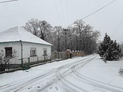 20200119_114429 (Győrsövényház) Tags: győrsövényház gyorsovenyhaz hó ho snow schnee havazás havazas