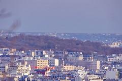 137 Paris Janvier 2020 - les toits de Paris depuis la Butte Montmartre, les arbres du Cimetière du Père Lachaise (paspog) Tags: paris france montmartre butte buttemontmartre janvier januar january 2020 cimetièredupèrelachaise cimetière cemetery friedhof