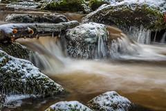Keiner Baum im Höllfall (AnBind) Tags: granitfelsen kamp kleinewasserfälle waldviertel höllfall 2019 ausflug naturdenkmal