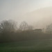 Misty Weather