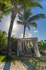 Resort Lounger (grwmcfarland) Tags: mauritius island holiday palm trees resort
