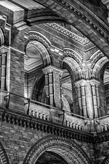 Natural History Museum (John Fenner) Tags: olympus em1 markii micro 43rds mirrorless mzukko 25mm f18 natural history museum london architecture building black white mono