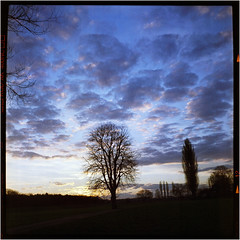 Wintersonne (Ulla M.) Tags: weltaflex himmel sky wolken clouds 6x6 mittelformat mediumformat homedeveloped selfdeveloped selbstentwickelt tlr expiredfilm canoscan8800f square sunrise sonnenaufgang vintagecamera tetenalcolortec ishootfilm filmshooter filmisnotdead umphotoart analog analogphotography analogue