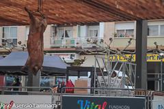 Feria de San Antón - Amurrio  - 2020  #DePaseoConLarri #Flickr-8 (Jose Asensio Larrinaga (Larri) Larri1276) Tags: 2020 feriadesanantón amurrio álava araba basquecountry euskalherria turismo fotografía productosdelazona