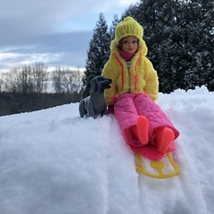 Going sledding (Foxy Belle) Tags: skipper dolll snow outside mod pink yellow snowsuit sled sledding dog barbie vintage titian hat trees puppy gray poseable beauty hound afghan superstar 1980s