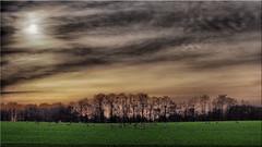 A winter day in Holstein (Ostseetroll) Tags: deu deutschland geo:lat=5404484602 geo:lon=1069543244 geotagged pönitzamsee scharbeutz schleswigholstein olympus em5markii winter