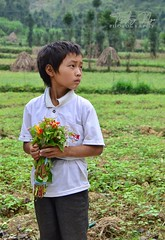 Hmong school boy in northwestern Vietnam (Treasure from a Traveller) Tags: hmong school boy ha giang province northwest vietnam vietnamese young selling wild flowers