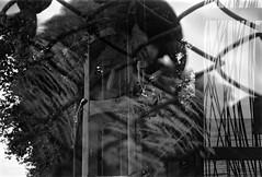 (џо_банана) Tags: analog 35mm doubleexposure analogue grainisgood 35mmphotography filmphotography fomapan filmisnotdead filmisalive analoguephotogrpahy sea summer film animal animals photography zoo seaside community rocks ishootfilm coastline grainy lefkada ilovefilm buyfilmnotmegapixels sharefilm dark cage