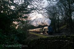 Through the Woods (MJREphotography) Tags: east lancashire railway elr lancs steam railways train 60009 union of south africa br british rail a4 lner irwell vale rawtenstall bury manchester greater lumb woods ewood bridge frosty sunrise