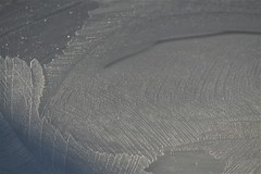 nature's own work of art (EllaH52) Tags: ice frost winter pattern nature art minimalism simplicity light shadows lines