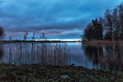 A Blue Morning (BigWhitePelican) Tags: helsinki finland lehtisaari blue morning sunrise shore canoneos70d adobelightroom6 niktools 2020 january