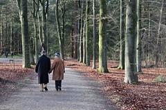 Winter walk (RW-V (No logos please)) Tags: canoneosr canonrf24105mmf4lisusm palaisparchetloo palastparkhetloo palaceparkhetloo paleisparkhetloo apeldoorn paysbas niederlande netherlands nederland walking hiking randonnée promenade soo couple sooc