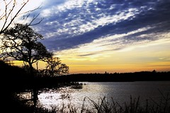 #sunset #lake #view (mrcnnwk537) Tags: view sunset lake