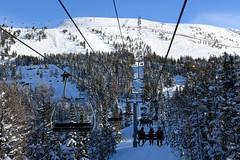 Going Up! (Anthony Mark Images) Tags: skilift skiers snow mountain snowcoveredtrees standishmountainliftgondolas sunshinevillage skiresort banff banffnationalpark alberta canada chairlifts skiing nikon d850 flickrclickx
