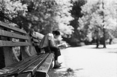 A Bench & A Book (Gabriella Ollandini) Tags: woman lady human person reading alone book bench blur softfocus ilford hp5 istillshootfilm filmisnotdead filmphotography filmcamera bw nyc brooklyn streetphotography urban sunny bright 35mm analog analogue quiet trees ricoh helios dreamy solitary summer sunshine candid monochrome depth dof
