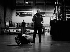 7818 - Teaching (Diego Rosato) Tags: boxe boxing pugilato boxelatina boxer maestro master pugile teaching insegnamento allenamento training palla ball abdominal exercize esercizio addominale ring little piccolo