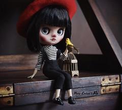 Yellow friend 🐤 (pure_embers) Tags: pure embers blythe doll dolls laura england uk custom po middie soroka black hair girl photography story yellow bird cage friend clown