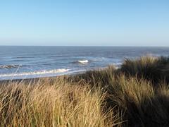 Beach walk #6 (19AB19) Tags: 6