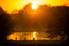 Richmond Park sunrise January 2020 (www.kevinoakhill.com) Tags: park sunrise amazing gorgeous january richmond 2020 camera 2 sun beautiful canon wonderful photography eos photo photos mark professional ii 7d rise travel people woman man hot male bird birds set thames female river ray stunning rays upon sky orange lake wet water animal animals yellow clouds fly flying wildlife flight deer incredible shadow silhouette pen pond shadows ponds