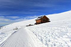Alpe di Rescieva (annalisabianchetti) Tags: rescieva alpe alps snow neve paesaggio landscape winter inverno baita beautiful dolomites dolomiti