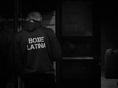 7948 - Master (Diego Rosato) Tags: boxe boxing pugilato boxelatina boxer maestro master pugile