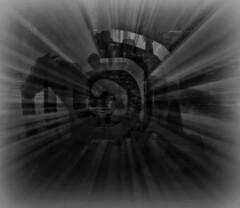Fast Exit (soniaadammurray - On & Off) Tags: ride horse people exit fast hss shadows reflections blackwhite trees landscape artchallenge sliderssunday digitalart art myart visualart abstractart experimentalart contemporaryart