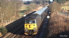 Photo of 73971, 5Z25, Aberdeen to Polmadie Car M.D. at Ashfield.