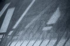 DSCF5512 (Mike Pechyonkin) Tags: 2020 moscow москва museum музей mamm мамм shadow тень игорь самолет igor samolet
