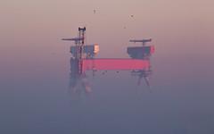 Brume (Philippe POUVREAU) Tags: jaune 2019 port harbour harbor saintnazaire france constructionnavale shipbuilding shipyard chantiersatlantique portique grantrycrane brume brouillard winter fog matinal sunrise portsaintnazaire