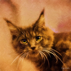Kant, il gatto. - Kant, the cat. (Eugenio GV Costa) Tags: approvato digital painting graphic art arte digitale