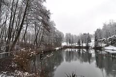 Gersfeld (Uli He - Fotofee) Tags: gersfeld rhön winter schnee licht bäume kiefer ulrike ulrikehe uli ulihe ulrikehergert hergert nikon nikond90 fotofee