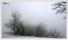 Albtrauf im Nebel (ki_mon_str) Tags: albtrauf schwäbischealb schnee nebel rossfeld