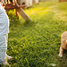 A baby with a dog next to it with sunset in the background outdoors