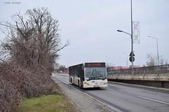 Mercedes-Benz Citaro Euro 3 - 4522 - R443 - 18.01.2020 (VictorSZi) Tags: romania pipera bus autobuz mercedes mercedescitaro mercedesbenz mercedescitaroeuro3 transport publictransport stb winter iarna january ianuarie nikon nikond5300