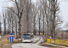 Mercedes-Benz Citaro Euro 3 - 4522 - R446 - 19.01.2020 (4) (VictorSZi) Tags: romania pipera bus autobuz mercedes mercedescitaro mercedesbenz mercedescitaroeuro3 transport publictransport stb winter iarna january ianuarie nikon nikond5300