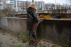 Frienship (Anja Schruba) Tags: friendship dog jagdhund womenanddog bochum ruhruni