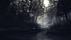 EnterSemeru_BlairWitch_20190914_22-47-50 (Jamie P Harris) Tags: blair witch video game forest horror screenshot screenshots xbox