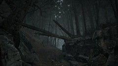 EnterSemeru_BlairWitch_20190908_22-55-03 (Jamie P Harris) Tags: blair witch video game forest horror screenshot screenshots xbox