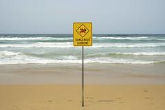 Manly Beach snapshot #_GB (gunnar.berenmark) Tags: sydney australia australien newsouthwales nsw beach sign current danger warning