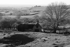 Hartwells Barn (cycle.nut66) Tags: hartwells barn brill hill brick diggings old preserved tree hills fields distance hedgerows light shade shadows tone blackandwhite monochrome grayscale panasonic lumix lx5 leica summicron