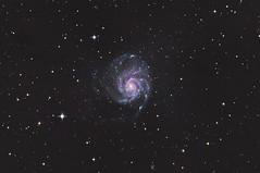 Pinwheel (michel1276) Tags: pinwheel pinwheelgalaxy messier messier101 m101 galaxy galaxie messierobject deepsky deepskyfotografie deepskyphotography astrofotografie astrophotography astro skywatcher150750 sonya7iii