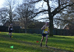 DSC_7065 (Steve Green Wolds Vets.) Tags: barton cross baysgarth park woldsvets