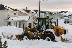 January 17, 2020, snow storm (gwhiteway) Tags: snow tractor driver plough driving extreme hard blowing clear covered plow blizzard climate harsh snowplow drift inconvenient hardship street city travel canada storm nature industrial transport machine equipment change environment clearing newfoundlandandlabrador stjohn's urban weather season transportation vehicle man male outdoors drive action object engine citylife cleaning driveway pushing blower removing