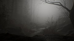 EnterSemeru_BlairWitch_20191006_19-49-45 (Jamie P Harris) Tags: blair witch video game forest horror screenshot screenshots xbox