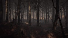 EnterSemeru_BlairWitch_20190908_22-51-09 (Jamie P Harris) Tags: blair witch video game forest horror screenshot screenshots xbox
