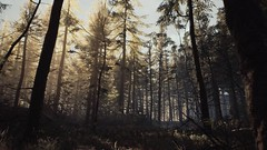 EnterSemeru_BlairWitch_20190908_21-55-10 (Jamie P Harris) Tags: blair witch video game forest horror screenshot screenshots xbox
