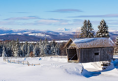 Cabot, 2019 (Dino Sokocevic) Tags: cabot vermont winter snow bridge outdoors landscape landscapes vt newengland snowy snowfall architecture
